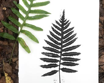 Nature Art Fern Print - Botanical Wall Art