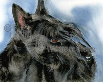 """Scottish Terrier, AKC Terrier, Pet Portrait Dog Art, Giclee Watercolor Painting Print, Wall Art, Home Decor, """"Great Scot"""" by Judith Stein"""