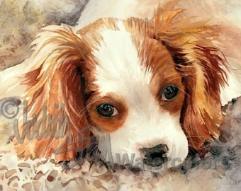 """Cavalier King Charles Spaniel, Blenheim, AKC Toy, Pet Portrait Dog, Watercolor Painting Print, Wall Art, Home Decor, """"Mary Queen of Scots"""""""