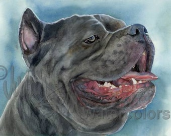 """Cane Corso, AKC Non Sporting, Pet Portrait Dog Art Watercolor Painting Print, Wall Art, Home Decor, """"Guard of the Courtyard"""" k9stein"""