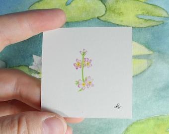 Water spring - Among the lilypads  - Botanical Illustration – miniature painting – miniature jewelry – flower painting -watercolour painting