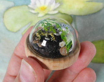 Not so smooth now - Among the lilypads - Miniature diorama Jewelry - Clear glass dome with delicate handmade smooth newt – animal jewelry