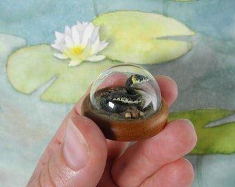 slithering through the sand - Among the lilypads  - Miniature diorama Jewelry - Clear glass dome with delicate handmade grass snake on sand