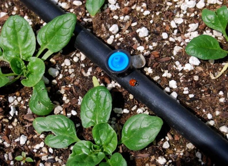 Drip Irrigation Plan for Raised Beds digital download image 0