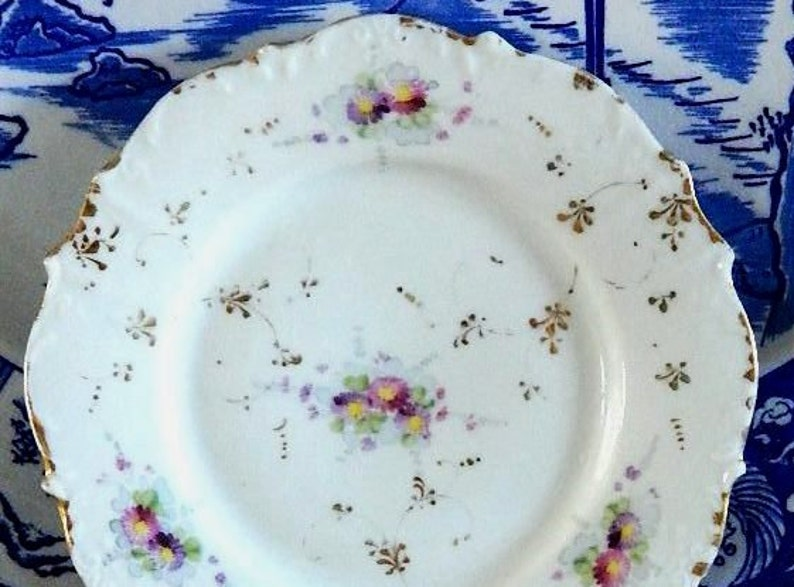 Lovely Vintage Hand Painted Dessert Plates set of two