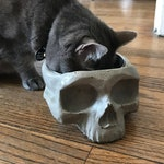 Handmade Concrete Skull Bowl - Halloween Treat Dish - Pet Food Bowl