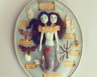 Sculpture hanging glass dome frame Siamese mermaids doll handmade curiosities cabinets of curiosities collection