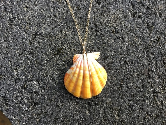 Hawaiian Sunrise Shell, Pink, Yellow, Orange, 14k Gold Filled Chain Necklace
