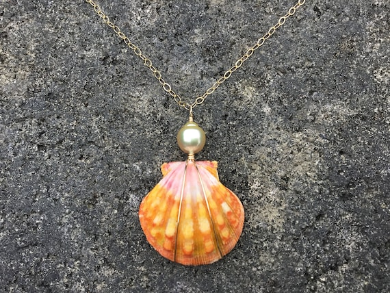 Hawaiian Sunrise Shell, Yellow South Sea Pearl, 14k Gold Filled Chain Necklace