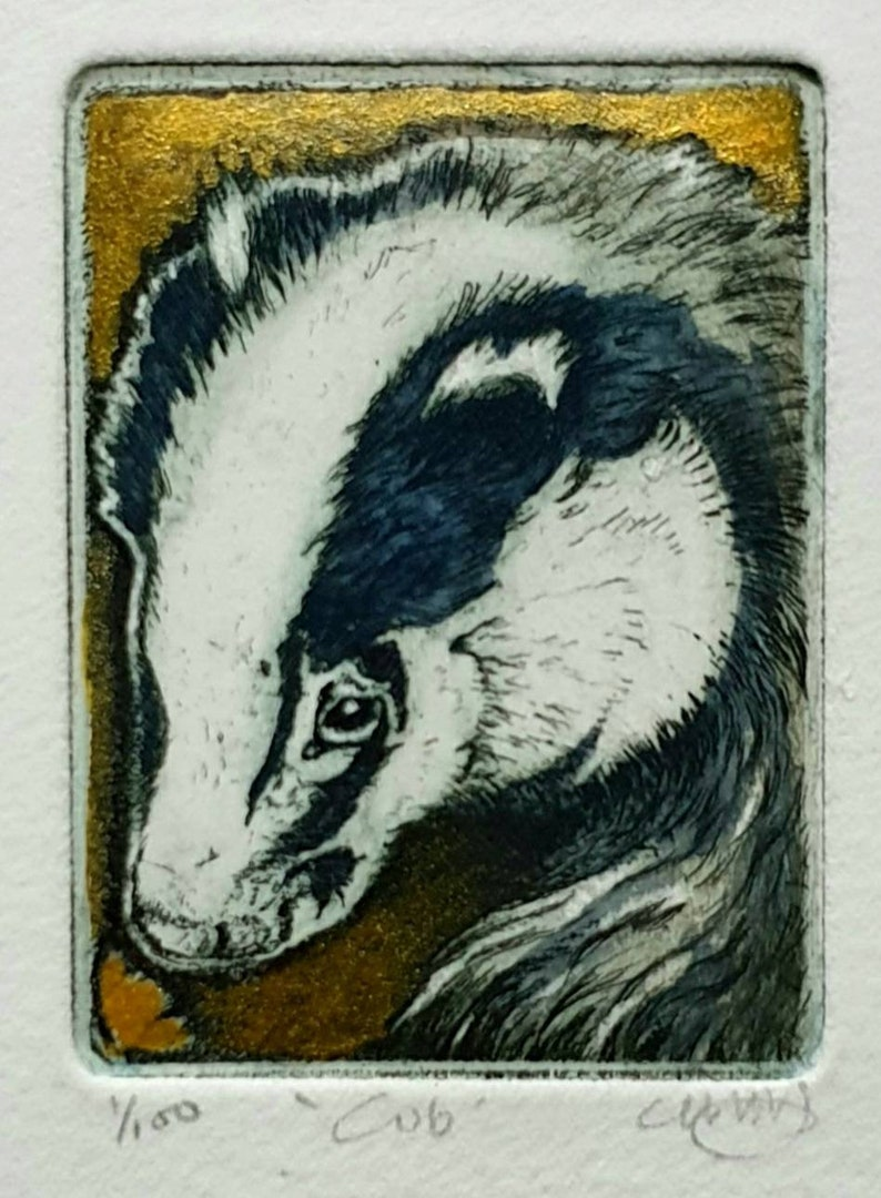 Badger cub smelling a flower etching