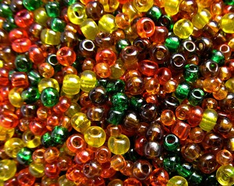 10 Grams Vintage Autumn Mix Italian Glass Seed Beads VG403