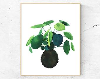 Chinese Money Plant Art Print, Japanese Kokedama plant, Watercolor Painting, Nature Illustration