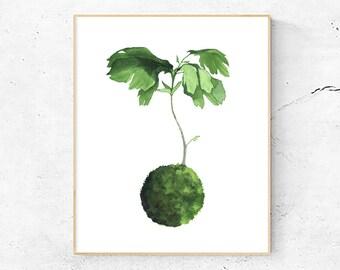 Fiddle Leaf Fig Art Print, Japanese Kokedama plant, Watercolor Painting, Nature Illustration
