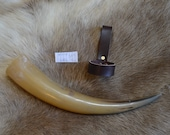 Viking Drinking Horn...