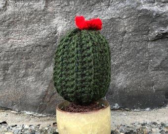 Cactus con flor grande tejido en crochet (amigurumi) | Crochet.eu | 270x340