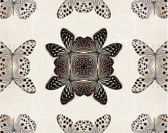 New! Abstract Butterfly Photograph- Kaleidoscope Print, Black White Butterfly Art, Butterfly Symmetry Print, Abstract Decor, Butterfly Art