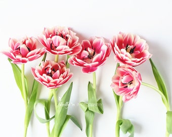 Pink Tulips Photo- Flower Photography, Floral Still Life, Tulip Photo, Tulips Print, Floral Wall Art, Pink White Green, Pink Flowers Photo