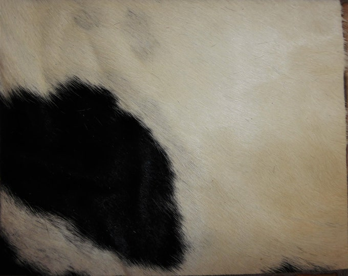 "Hair On Leather 8""x10"" Wrinkled Off WHITE with BLACK Hair Cowhide #363  PeggySueAlso™ E2849-09"