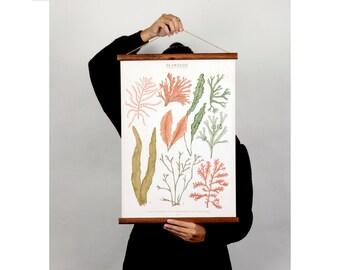 Seaweeds botanic illustration canvas poster - vintage educational chart illustration watercolor painting art print