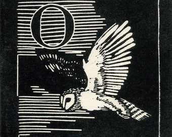 Linocut relief print,O is for Owl,open edition original hand pulled print