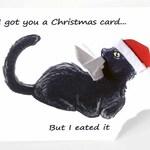 Christmas Card, Black Cat Card, Santa Hat, Happy Holidays, Merry Christmas, Pet Owner, Cat Lover, Funny Greeting, Handmade Card, Custom Card