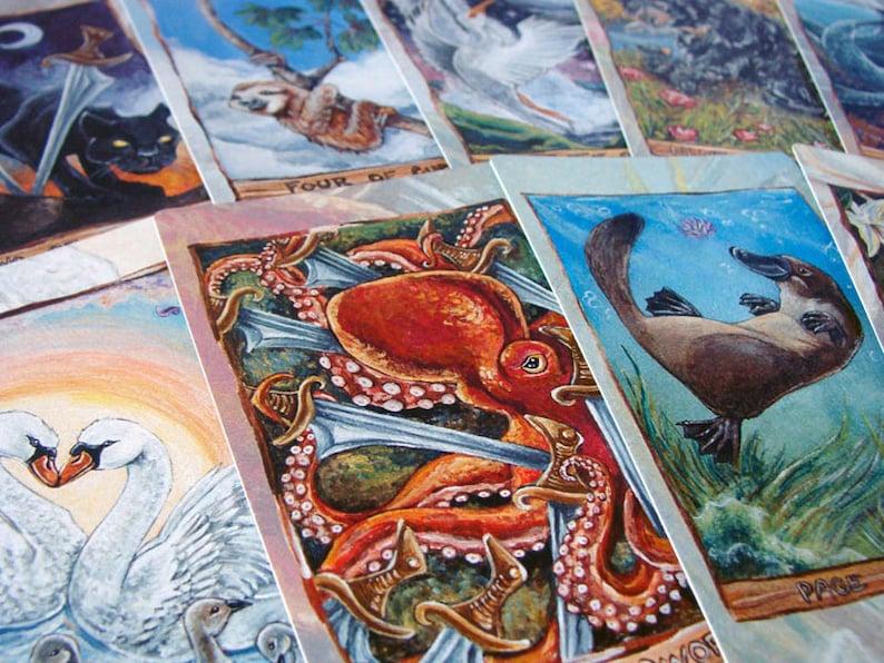 Animism Tarot Deck, 79 Card Animal Tarot, Happy Squirrel Tarot Card, Animal  Totem Symbolism, Gift for Tarot Readers, Animal Lovers