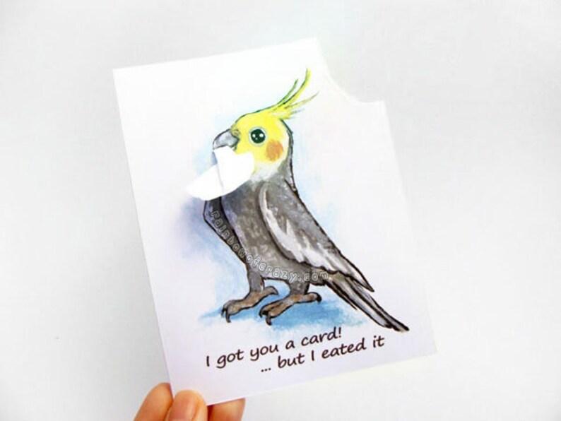 Cockatiel Card Custom Card Funny Greeting Card Pet Bird image 0