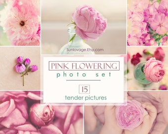 Pink flowering photo set - Collection of flower photos - 15 high-resolution photos - Digital download