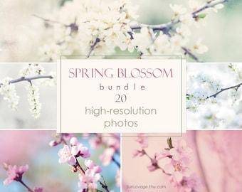 Spring blossom bundle - Big collection of flower photos - 20 high-resolution photos - Digital download