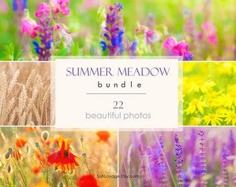 Summer meadow bundle - Big collection of flower photos - 22 high-resolution photos - Digital download