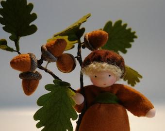 Acorn - Flower Child - Waldorf  - Nature Table