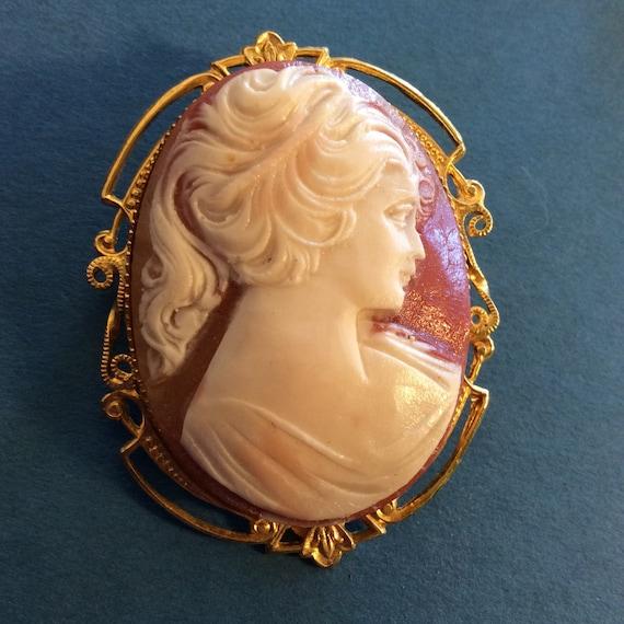 1 - Cameo Brooch Clip On Earrings Set Molded Plas… - image 4