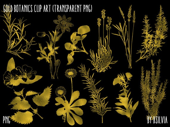 Gold Foil Botanics Clip Art, Gold Floral Clip Art, Digital Gold Floral Clip Art, Gold Foliage, Digital Scrapbooking Gold Botanics Clip Art