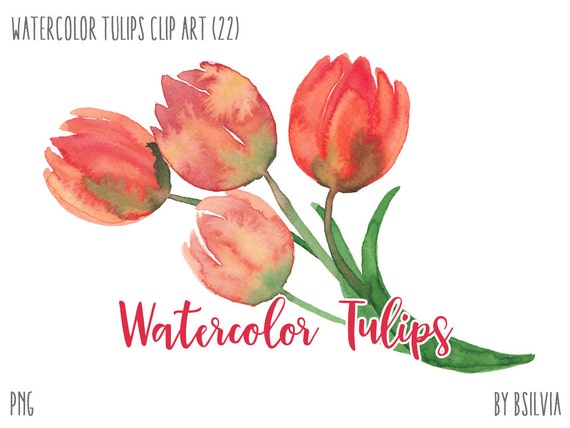 Watercolor Flowers, Watercolor Tulips Clip Art, Watercolor flowers PNG files, Tulips Watercolor Digital Clip Art, Floral Wedding