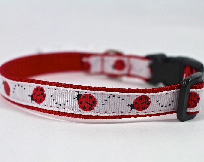 dog collar, red dog collar, ladybug collar, small dog collar, pet gift, dog accessory