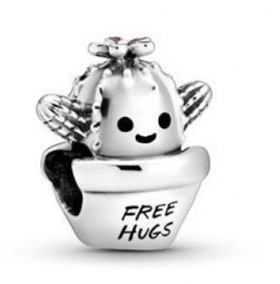 Free Hugs, Cactus Charm, Pandora, Survive, Thrive, Flower Pot, Engraved, Pink Enamel Daisy, 925, Trying Environments, Healing