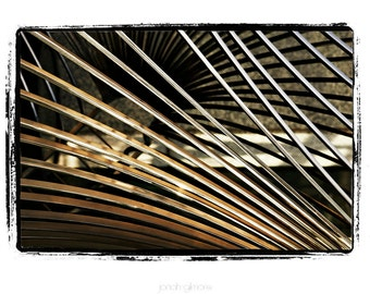 Natures Abstract Palm Fronds in Earth Tones and Dimensional Lines Fine Art Greeting Card