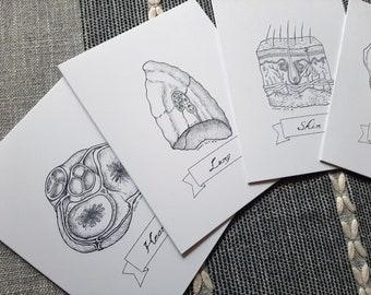 Set of 5 Ink Drawing Greeting Cards Set, Handmade Variety Pack