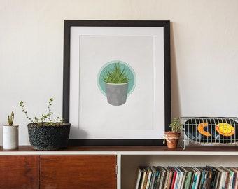 Zebra Haworthia Houseplant Illustration (Unframed Art Print)