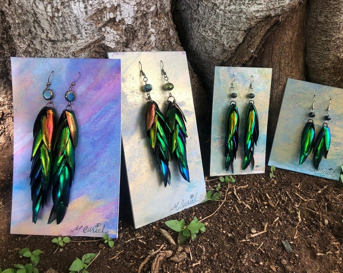 Featured listing image: Rainbow Elytra Jewel Beetle Wing Earrings