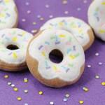 Confetti Donut with Sprinkles Organic Catnip Cat Toy