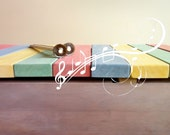 Musical Toy Chest with xylophone lid. Toy xylophone as toy chest. wooden percussion instrument for kids.