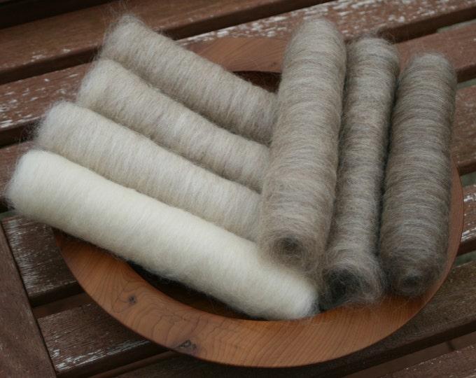 Gentle Shetland Gradient Batt Set - 100g