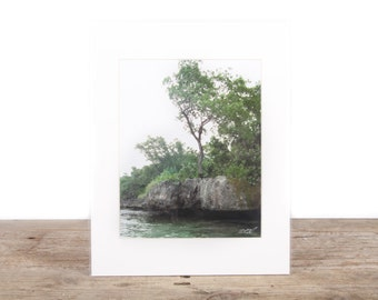 Original Fine Art Photography / Beach Photography / Beach Sand Palm Trees / Beach Gift / Beach Decor / Beach House Decorations / Ocean