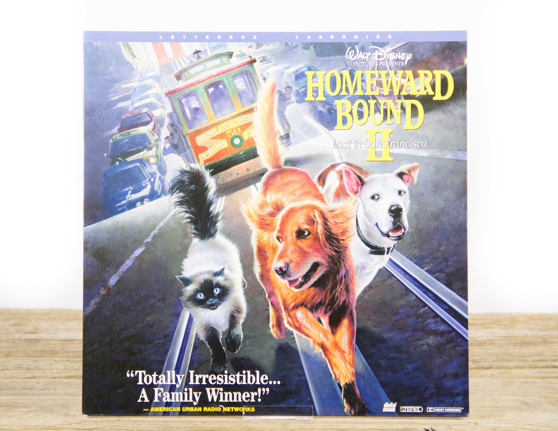 Vintage Disney Homeward Bound 2 Laserdisc Movie Vintage Laser Disc Movies Movie Theater Decor Movie Room Decor Movie Posters 90s Decor