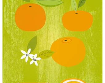Oranges and tangerine poster - Original ILLUSTRATED Digital Image Download