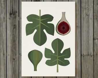 Fig Fruit Kitchen Food Poster - Instant download - Printable