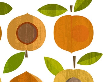 Apricots - Digital Download digital collage sheet fruit CLIPART