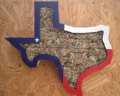 TEXAS Vertical Planter Texas State Shaped Perfect for Succulents