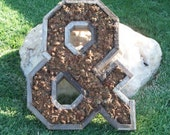 Large or Small Ampersand DIY Unfinished Succulent Planter Succulent Box